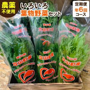 【ふるさと納税】いろいろ葉物野菜セット 定期便(6回コース)【野菜類/セット・詰合せ】