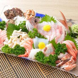 【ふるさと納税】能登の朝どれ「いきいき七尾魚」お刺身詰め合わせ 着日指定 鮮魚 盛り合わせ