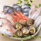 ふるさと納税,石川県,七尾市,能登,鮮魚,詰め合わせ,盛り合わせ,2〜3人前
