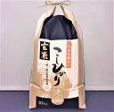 【ふるさと納税】石川県能登産こしひかり玄米10kg(10kg×1袋)/日本初!世界農業遺産認定「能登の里山里海」の恵み 令和元年10月より…