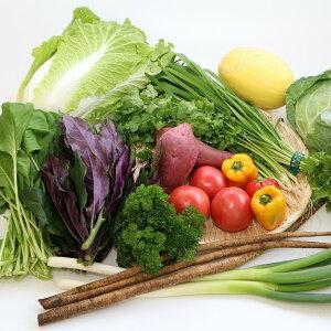 【ふるさと納税】直売所直送季節の野菜の詰合せ