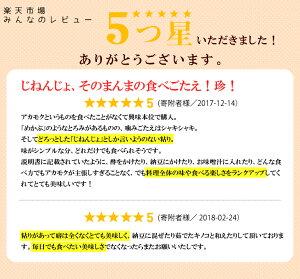 【ふるさと納税】能登半島七尾産天然アカモク「海のじねんじょ」(120g×8パック)