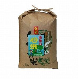 【ふるさと納税】こしひかり能登の心米(精米10kg)/10kg×1袋