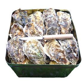 【ふるさと納税】魚介類 牡蠣 /能登かき/殻付き・加熱用・半斗缶[約40〜50個]※2020年12月より順次発送