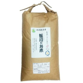 【ふるさと納税】【令和元年産】能登のコシヒカリ 飯川のお米 10kg(玄米10kg×1袋)特別栽培米 ※10 月15日〜3月31日に発送予定