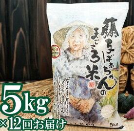 【ふるさと納税】130001. 【定期便】藤子ばぁちゃんのまごころ米 5kg×12回(毎月)