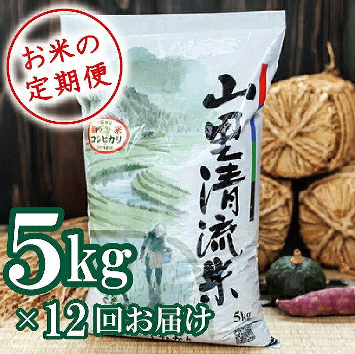 【ふるさと納税】108001. 【定期便】山里清流米コシヒカリ 5kg×12回(毎月)