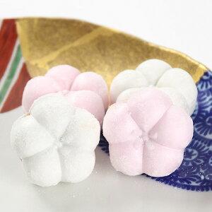【ふるさと納税】009012. 正月の和菓子「福梅」(16個入)
