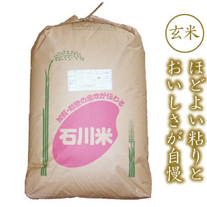 【ふるさと納税】028001. 早生品種の代表格ゆめみづほ 玄米30kg