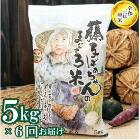 【ふるさと納税】065002. 【定期便】藤子ばぁちゃんのまごころ米 5kg×6回(隔月)