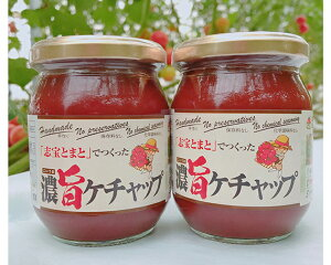【ふるさと納税】No.130 濃旨トマトケチャップ / 石川県