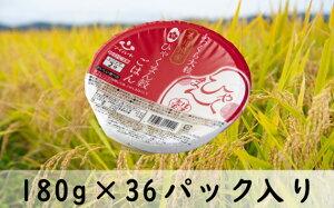 【ふるさと納税】No.191 石川県オリジナル米 ひゃくまん穀パックごはん 180g×36パック / お米 白米