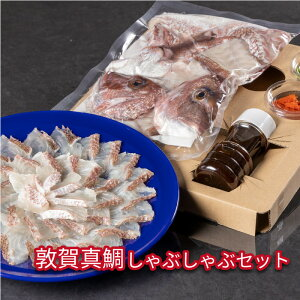 【ふるさと納税】敦賀真鯛しゃぶしゃぶセット【魚介類・鯛】