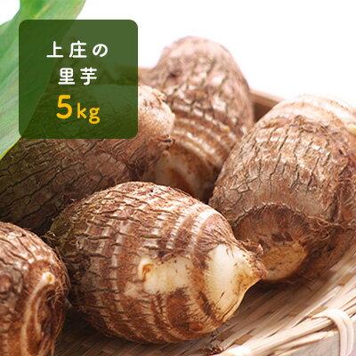 【ふるさと納税】上庄の里芋5kg 日本一の味をめざす特別栽培里芋 【野菜・根菜】 お届け:2018年11月〜2019年4月まで