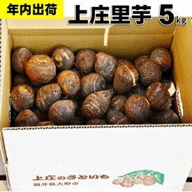 【ふるさと納税】【年内お届け】上庄さといも5kg 日本一の味をめざす特別栽培里芋 クレジット限定 【野菜・根菜】 お届け:2021年10月20日〜2021年12月28日