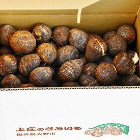 【ふるさと納税】【年内お届け】無農薬で作った上庄さといも4kg 日本一の味をめざす特別栽培里芋 クレジット限定 【野菜・根菜】 お届け:2021年10月20日〜2021年12月28日