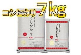 【ふるさと納税】令和元年産こしひかり 7kg(5kg+2kg) 6月発送分 [D00342f]