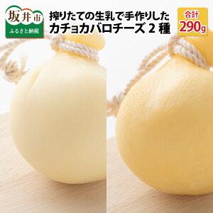 【ふるさと納税】搾りたての生乳で手作りした、カチョカバロチーズ 2個詰め合わせ(プレーン、くん製)/ ちーず 熟成 ミルク おつまみ