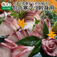 【ふるさと納税】やまに水産からのお届け!旬の寒ブリ刺身用1.2〜1.5kg