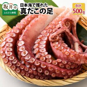 【ふるさと納税】【コロナ訳あり】【緊急支援】日本海で獲れた、真だこの足(茹で)2〜5本 (計500g)