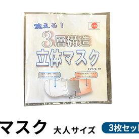 【ふるさと納税】洗える!3層構造 立体マスク 大人サイズ 3枚セット 【雑貨・日用品】