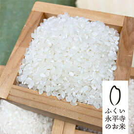 【ふるさと納税】令和2年度 永平寺町産 特別栽培米コシヒカリ 10kg 【お米・コシヒカリ】