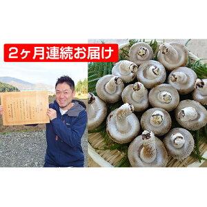 【ふるさと納税】【2ヶ月連続】菌床による、生シイタケで「おーい菌床しいたけ」1kg×2ヶ月 【定期便・野菜・きのこ・茸・キノコ・しいたけ・椎茸】