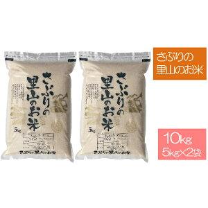 【ふるさと納税】令和二年度!さぶりの里山のお米 コシヒカリ 5kg×2 10kg 【お米・5kg・コシヒカリ】