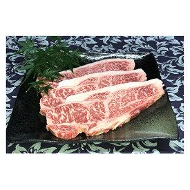 【ふるさと納税】福井県のブランド牛 若狭牛 サーロインステーキ用 200g×3枚 【牛肉・サーロイン】