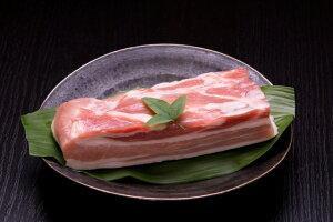 【ふるさと納税】 豚肉 熟成肉 富士桜ポーク 熟成甲州富士桜ポークバラブロック1kg 送料無料