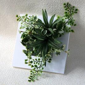 【ふるさと納税】インテリアグリーン