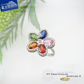 【ふるさと納税】 ジュエリー リング カラー サファイア 宝石 指輪 天然石 アクセサリー レディース プレゼント ギフト