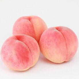 【ふるさと納税】山梨のおいしい 桃 1.5kg(4〜5個)<出荷時期:2020年7月10日〜8月10日>【 フルーツ もも 山梨県 山梨市 】