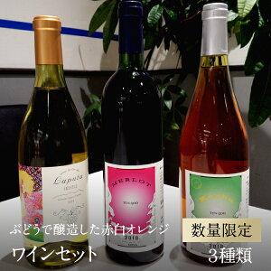 【ふるさと納税】南アルプス天空舎が贈る南アルプス産ぶどうで醸造した赤白オレンジの3種類ワインセット