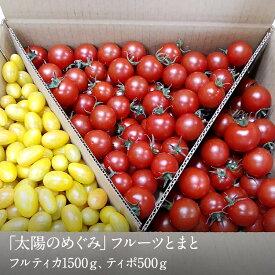 【ふるさと納税】フルーツトマト 山梨県南アルプス市からお届け「太陽のめぐみ」フルーツとまと2kg(フルティカ1500g、ティポ500g) 夏季冷蔵出荷