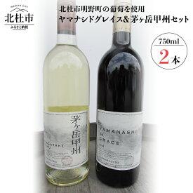 【ふるさと納税】 山梨 ワイン 赤ワイン 白ワイン ぶどう 葡萄 YAMANASHI de GRACE 750ml 父の日 送料無料