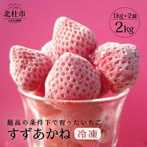 【ふるさと納税】いちご 冷凍 夏イチゴ すずあかね 2kg 山梨県北杜市産 送料無料
