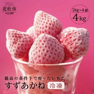 【ふるさと納税】いちご 冷凍 夏イチゴ すずあかね 4kg 山梨県北杜市産 送料無料