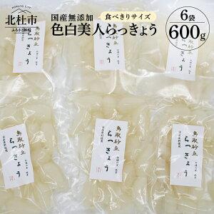 【ふるさと納税】 らっきょう 国産無添加 色白美人らっきょう 食べきりサイズ 600g 100g×6袋 北杜市 送料無料