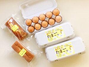 【ふるさと納税】 たまご 卵 ケーキ あさひのたまご 手づくりケーキ カステラ レモンケーキ セット 平飼い 有精卵 自家製飼料飼育 レモン色の黄身 送料無料