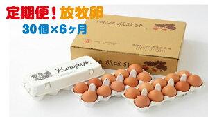 【ふるさと納税】定期便!放牧卵30個×6ヶ月(甲斐B-24)