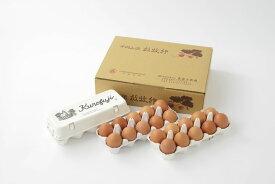 【ふるさと納税】【定期便】放牧卵18個×6ヶ月(甲斐B-21)