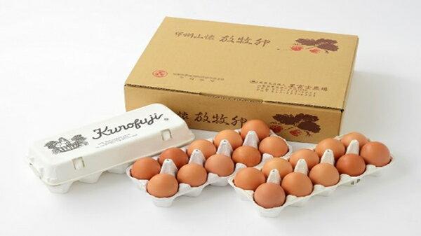 【ふるさと納税】定期便!放牧卵30個×6ヶ月【甲斐B-24】