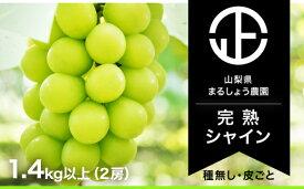 【ふるさと納税】シャインマスカット 産地直送 2房 1.4kg以上 山梨 おすすめ フルーツ ぶどう