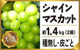 【ふるさと納税】シャインマスカット 約1.4kg 2房 産地直送 完熟 フルーツ ぶどう