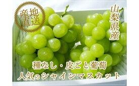 【ふるさと納税】シャインマスカット 産地直送 約1.4kg 2房 山梨 おすすめ フルーツ ぶどう 高級