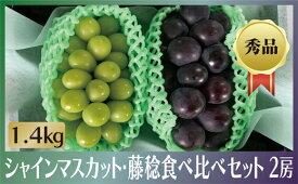 【ふるさと納税】シャインマスカット 藤稔 1.4kg 食べ比べセット 山梨 産地直送 おすすめフルーツ ぶどう 高級