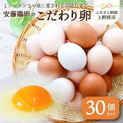 【ふるさと納税】安藤鶏卵のこだわり卵