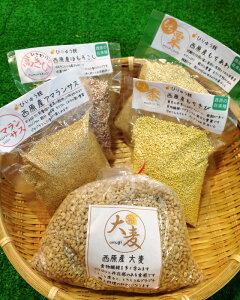 【ふるさと納税】さいはら雑穀5種セット