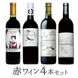 【ふるさと納税】赤ワイン4本セット 山梨のワイン 酒 山梨
